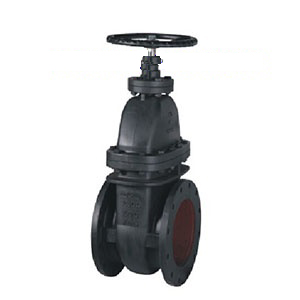 Meat Seated Gate Valve NRS 125LB
