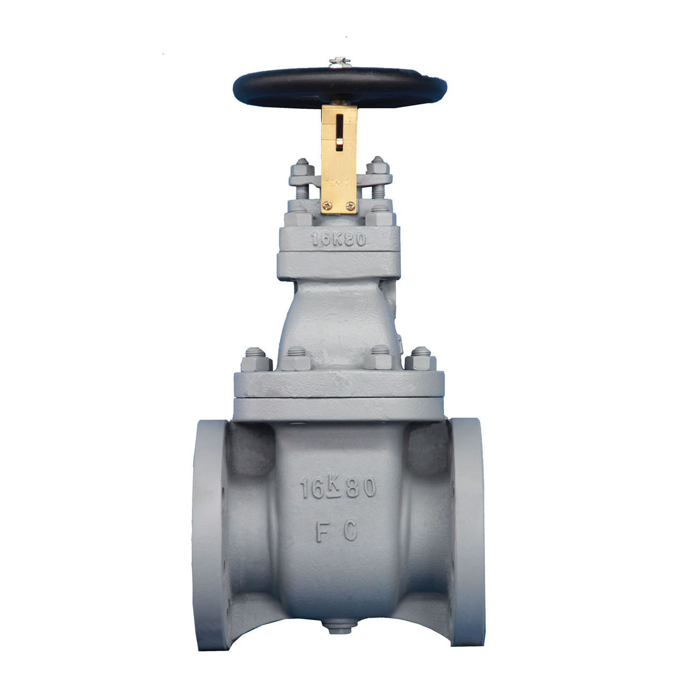 Cast Iron Gate Valve JIS F7369 16k